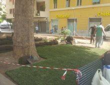 Piazza Scipione Ammirato: uno spazio adottato da privati e restituito ai cittadini