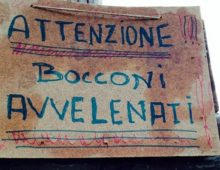 Ancora bocconi avvelenati: allerta all' Appio Latino