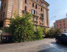 San Giovanni: bomba d'acqua , vento forte e allagamenti