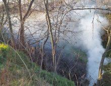 Parco della Caffarella: appiccavano roghi tossici, arrestati tre rumeni