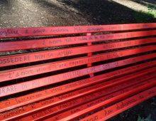 Villa Lazzaroni: una nuova panchina per la giornata contro la violenza sulle donne
