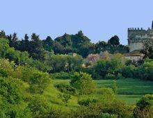 Smog: test su 5 parchi romani, i migliori Caffarella e Villa Ada