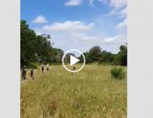 Genitori portano il figlio in Caffarella per provare la nuova minimoto