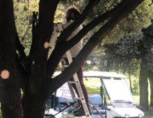 Caffarella: grazie al 5 per mille dei cittadini, continua la manutenzione del parco