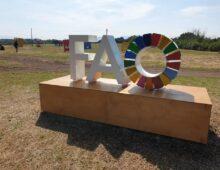 Caffarella: inaugurato oggi il G20 Green Garden