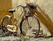 Bici, i furti all'ordine del giorno
